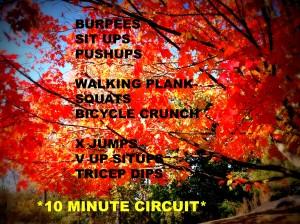 10 MINUTE CIRCUIT